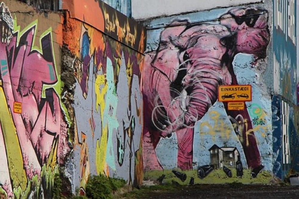 Hoe tem je een roze olifant?
